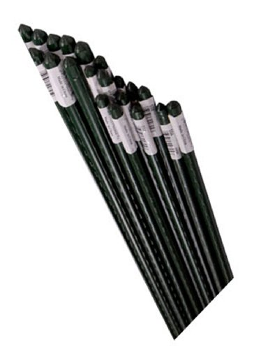 Bond SS5 100-Pack Super Steel Stake for Plant Support, 5-Feet by Bond