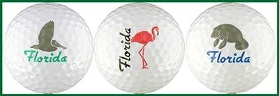 Florida w/ Pelican, Flamingo & Manatee Golf Ball Gift Set