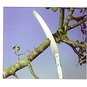 Derby The Pruning Saw