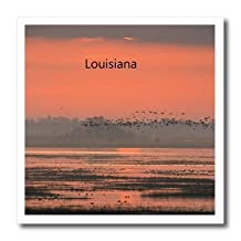Florene - America The Beautiful - Print of Louisiana Sunset With Birds Flying - Iron on Heat Transfers - 6x6 Iron on Heat Transfer for White Material - ht_194698_2