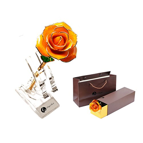 Orange Gold Dipped 24K Plated Real Rose 100% Natural Flower Long Stem Gift for Lover Valentine's Day Mother's Day Wife Daughter Birthday Anniversary Gifts+Stand+Gift Box Foil - Gold Orange