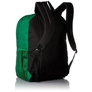 JanSport Big Student Classics Series Backpack - Amazon Green