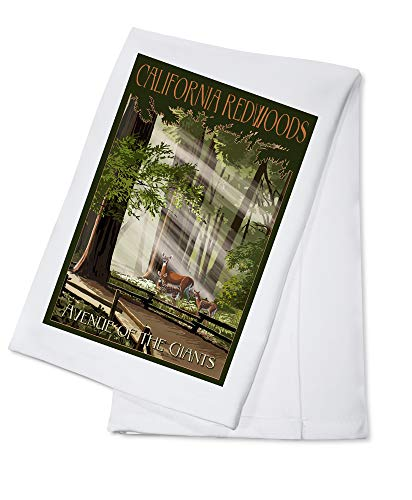 California Redwoods - Avenue of the Giants - Deer and Fawns 99780 (100% Cotton Kitchen Towel)