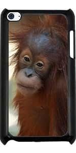 Funda para Ipod Touch 4 - Orang_utan_2014_0901