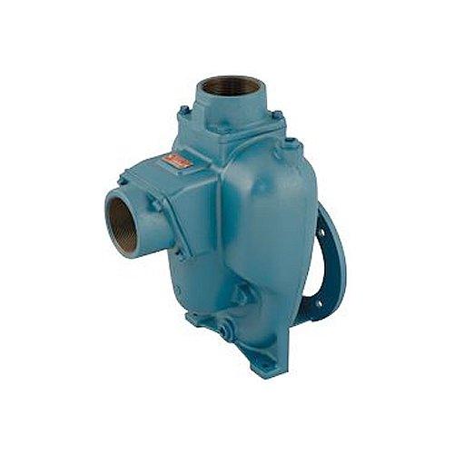 MP Pumps 039-21372 Flomax 15 NPT Self Priming Centrifugal Pump Pak Cast Iron, 6.0