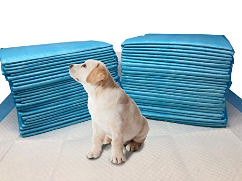 (Mednet Direct 11724Dp-100 Small Puppy Pads, 17 X 24, 100Count, Extra Absorbent Underpads)
