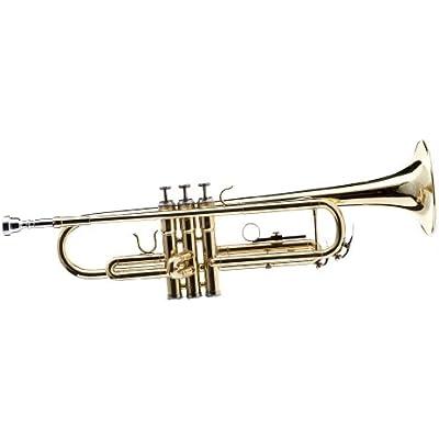 hawk-wd-t311-bb-trumpet-with-case