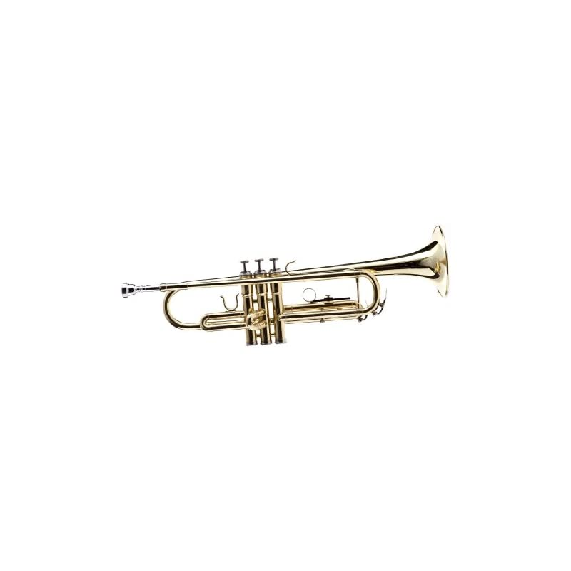 Hawk WD-T311 Bb Trumpet with Case and Mo