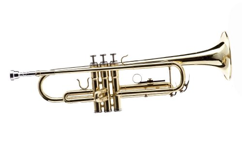 Hawk WD-T311 Bb Trumpet with Case and Mouthpiece, Brass Lacquer