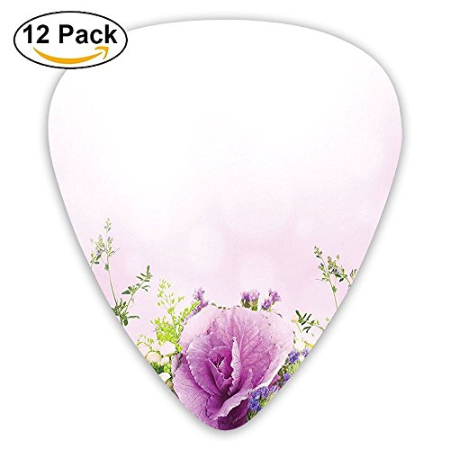 Newfood Ss Spring Cabbage Flowers In Fragrant Bouquet With Partially Shaded Color Romance Guitar Picks 12/Pack Set ()