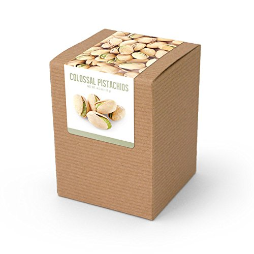 Pistachios, Roasted & Salted, Brown Box 48ct/4oz by In-Room Plus, Inc.