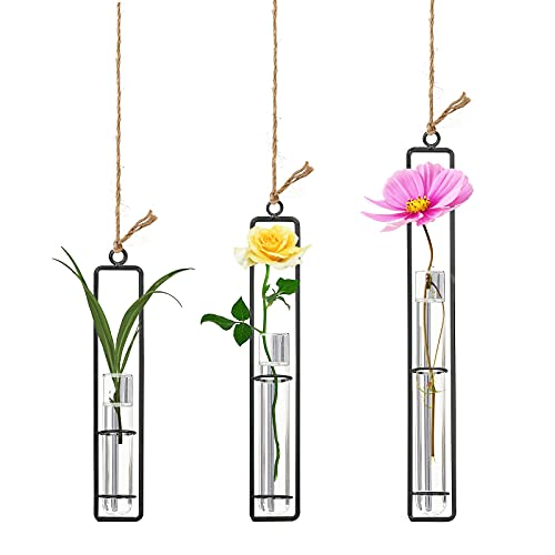 Beautiful Hanging Vases