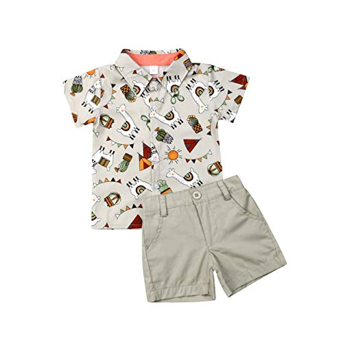 Toddler Kid Baby Boys Short Sleeve Cartoon Tops Shirts T-Shirt Shorts Pants 2Pcs Summer Outfits 1-6Y (3-4Y, Light Grey)