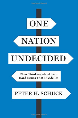 One Domain Undecided: Clear Thinking about Five Hard Issues That Divide Us