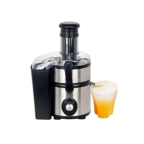 Juicer Fruits Vegetables Slowly Extractor