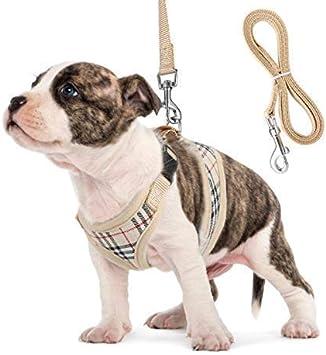 Unihubys juego de arnés y correa para perro, arnés de malla ...