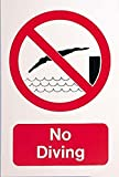 Swimming Pool Swimmers Warning & Safety Foamex Large No Diving Sign Wall Poster