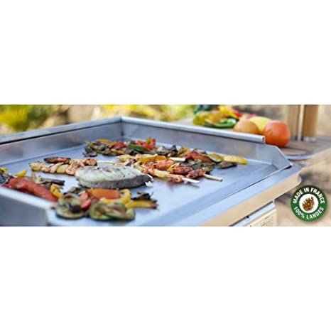 Plancha Inox Electica 220-230V Tonio - Savorcook Selects: Amazon