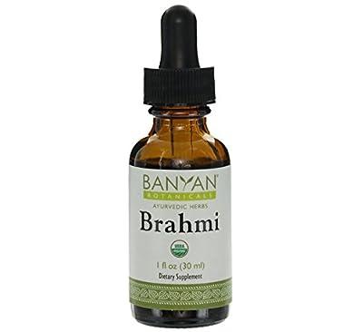 Banyan Botanicals Brahmi - Gotu Kola Liquid Extract - Certified Organic, 1 oz