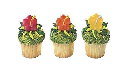 HIBISCUS Tropical (12) LUAU Hawaiian PARTY Cupcake Cake Topper Decoration RINGS (Hawaiian Luau Party Food)