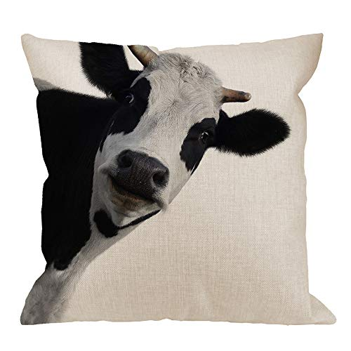 (HGOD DESIGNS Cow Throw Pillow Cushion Cover,Funny Animal Farm Cow Cotton Linen Polyester Decorative Home Decor Sofa Couch Desk Chair Bedroom 18x18inch Square Throw Pillow)