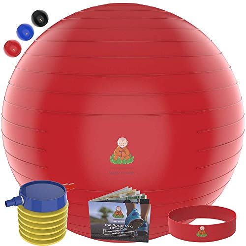 Exercise Ball Stability Fitness Balls | Best Professional Balance Anti-Burst Set - Yoga Large Thick Gym Ball with Pump & Accessories, Extra Pin for Valve, Elastic Loop & Hard Cover Workout Guide...