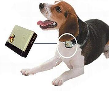 Localizador GPS para mascotas (perros o gatos). Te permite conocer en todo momento la ubicación de tu mascota desde tu propio móvil (requiere cobertura ...