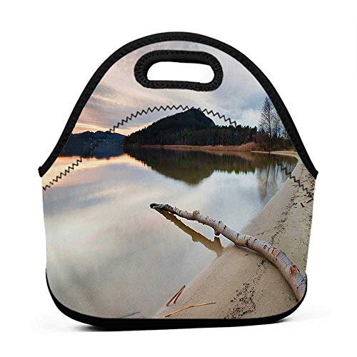 Large Size Reusable Lunch Handbag Driftwood,Landscape of Lake Shoreline with the Dead Tree Trunk in the Water Digital Print,Sand Brown,sling lunch bag for men
