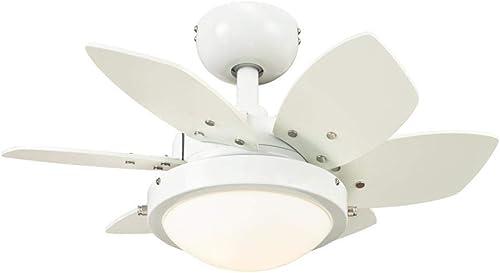 Ciata Lighting 24 Inch Quince Indoor Ceiling Fan