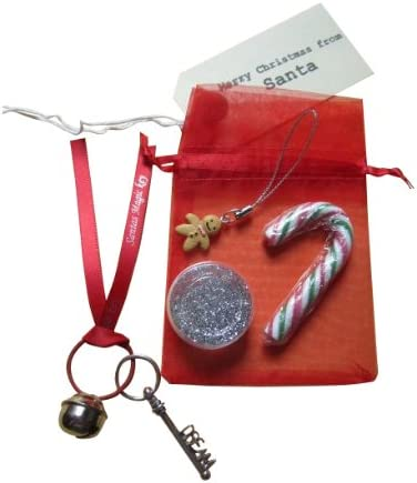 POLAR EXPRESS I BELIEVE LARGE JINGLE SLEIGH BELL /& CHARM IN XMAS ORGANZA BAG