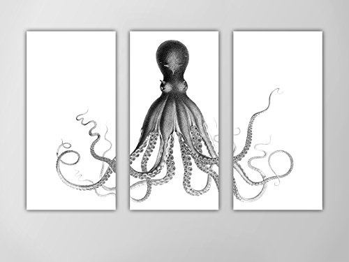 Octopus triptych octopus nautical art print lord bodners octopus black and white octopus