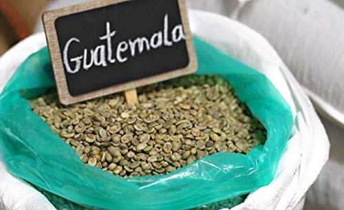 GUATEMALA SHB GREEN COFFEE BEANS by TMCS (Image #2)