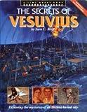 The secrets of Vesuvius (A Time quest book)