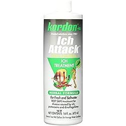 KORDON #39446 100% Natural and Herbal Formula Ich Attack-Ich Treatment for Aquarium, 16-Ounce