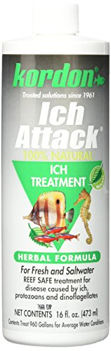 KORDON  #39446  100% Natural and Herbal Formula Ich Attack-Ich Treatment for Aquarium, 16-Ounce (Best Ick Medicine For Fish)