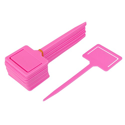 Seed Packet Markers - MagiDeal 20x Plastic Tags Markers Garden Seed Packet Plant Flower Labels Holder Pink