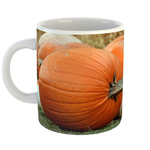 Westlake Art - Pumpkin Autumn - 11oz Coffee Cup Mug - Modern Picture Photography Artwork Home Office Birthday Gift - 11 Ounce (9128-2AF30) -