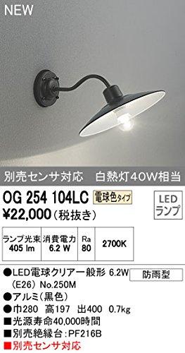 オーデリック エクステリアライト ポーチライト 【OG 254 104LC】OG254104LC B01AHQFLQE 10905