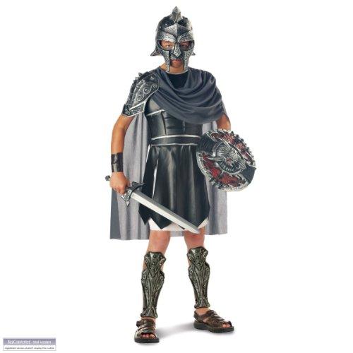 Gladiator Costume - Child Costume - Large(10-12)]()