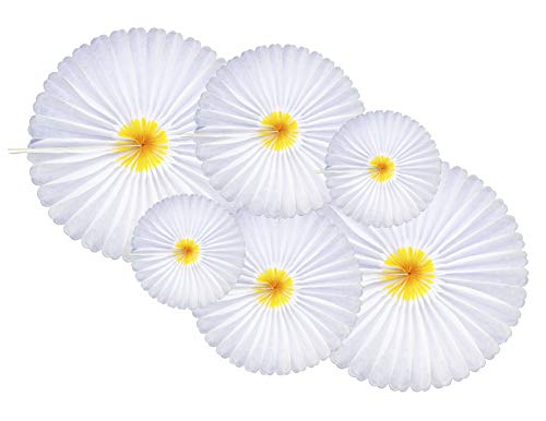 6-Piece Daisy Flower Theme Decorations Tissue Paper Fan Party Supplies perfect for Classroom Baby Shower Wedding Birthday Backdrop Garland (Two 24 inch, Two 16 inch, Two 9.5 inch.) -