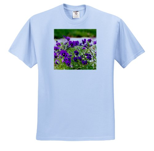 Lee Hiller Photography Washington DC - Basket of Purple Pansies - T-Shirts - Adult Light-Blue-T-Shirt Large (ts_5017_52)