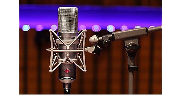Stam Audio SA-87 - Micrófono de consensador: Amazon.es: Instrumentos musicales