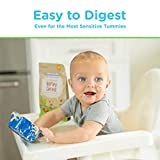 Healthy Times Organic Whole Grain Oatmeal Baby