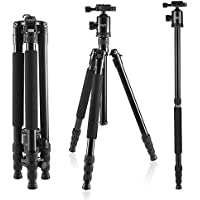 Foxin F560 65 Inch Light Weight Portable Aluminium Travel Camera Tripod with 360 Degree Ball Head and Carry Case for Canon Nikon Sony Olympus DSLR (F560 Black)