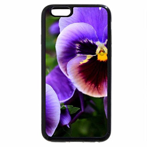iPhone 6S / iPhone 6 Case (Black) CUTE FACES of PANSIES