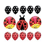 Cute Ladybug Polka Dot Birthday Baby Shower Balloon Party Set Mylar Latex by Qualatex