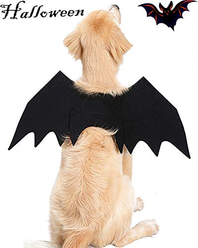 Halloween Pet Costume Spider Skeleton Bat Wings Dog Cat Dress up Halloween Party Scary Clothes for Small Medium Dog Cat Cosplay -