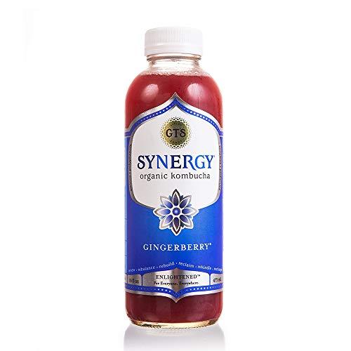 GTs Kombucha - Gingerberry 16oz