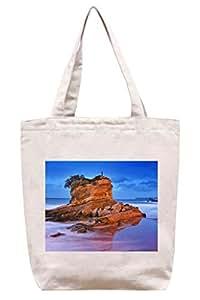 Rock En La Playa En España–algodón Canvas Tote Bag