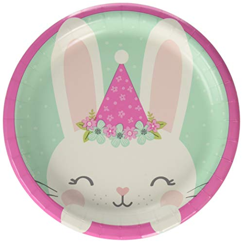 - Creative Converting Party Supplies, Bunny Party Dessert Plates, Plate Lunch, Multicolor, 7